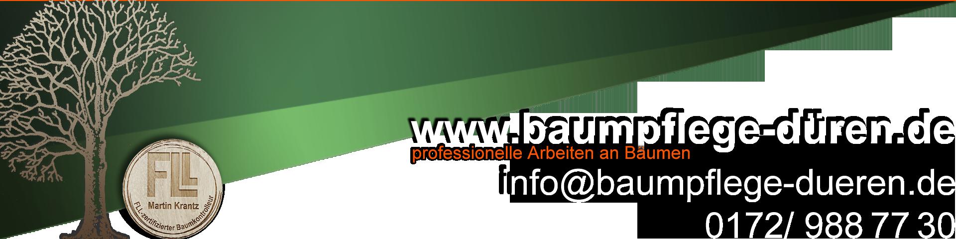 www.baumpflege-düren.de